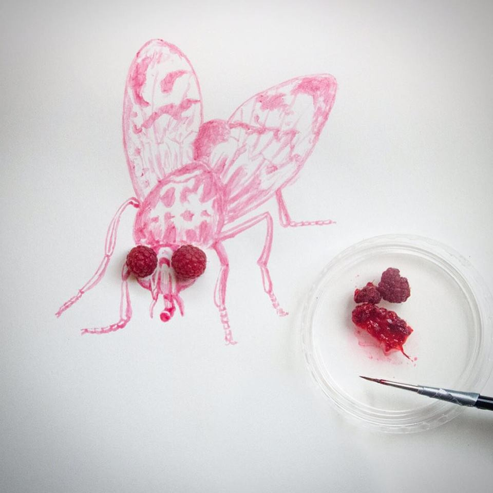 photo of a fruit fly painted with juice from a raspberry by Kelly Crull
