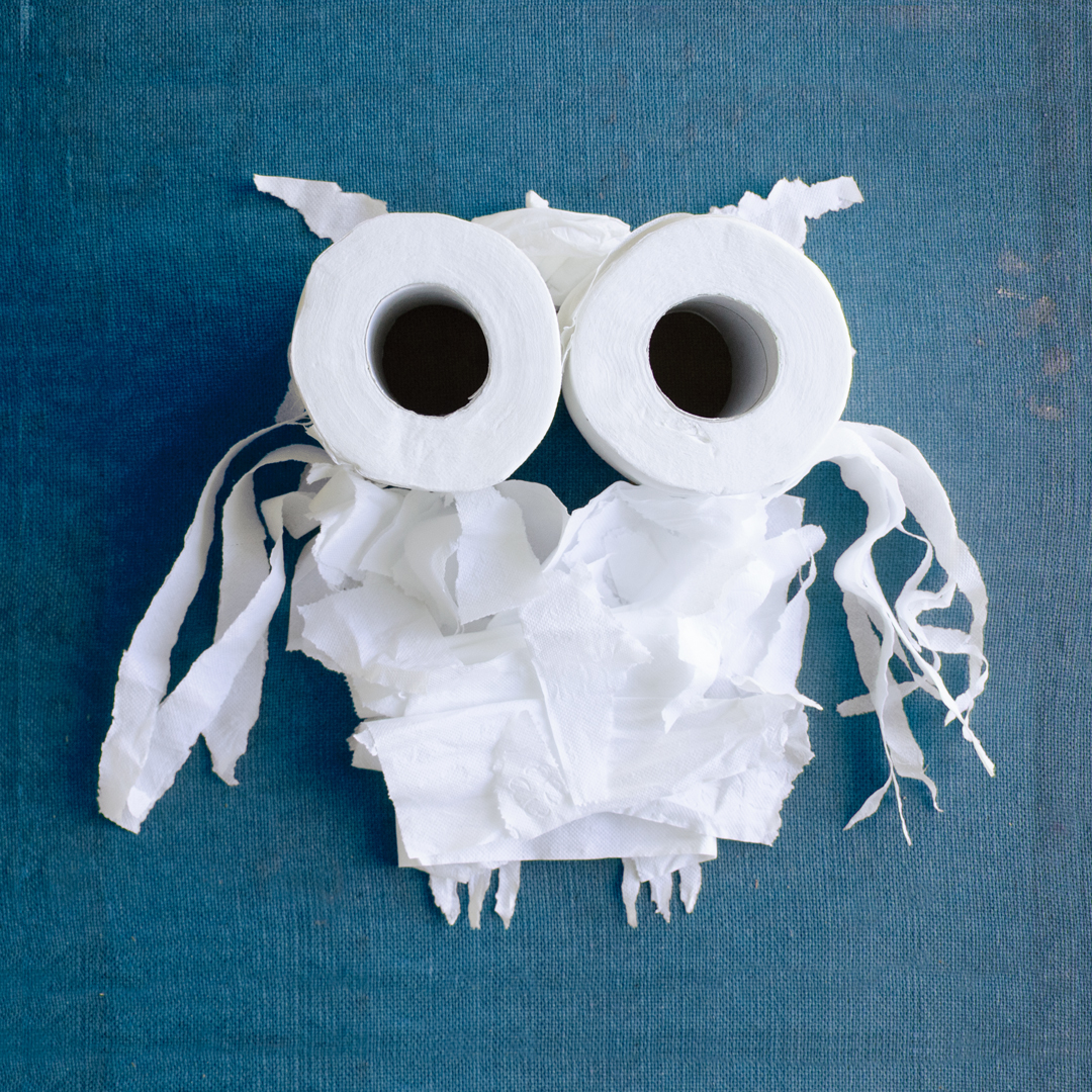 photo of an owl made out of toilet paper by Kelly Crull