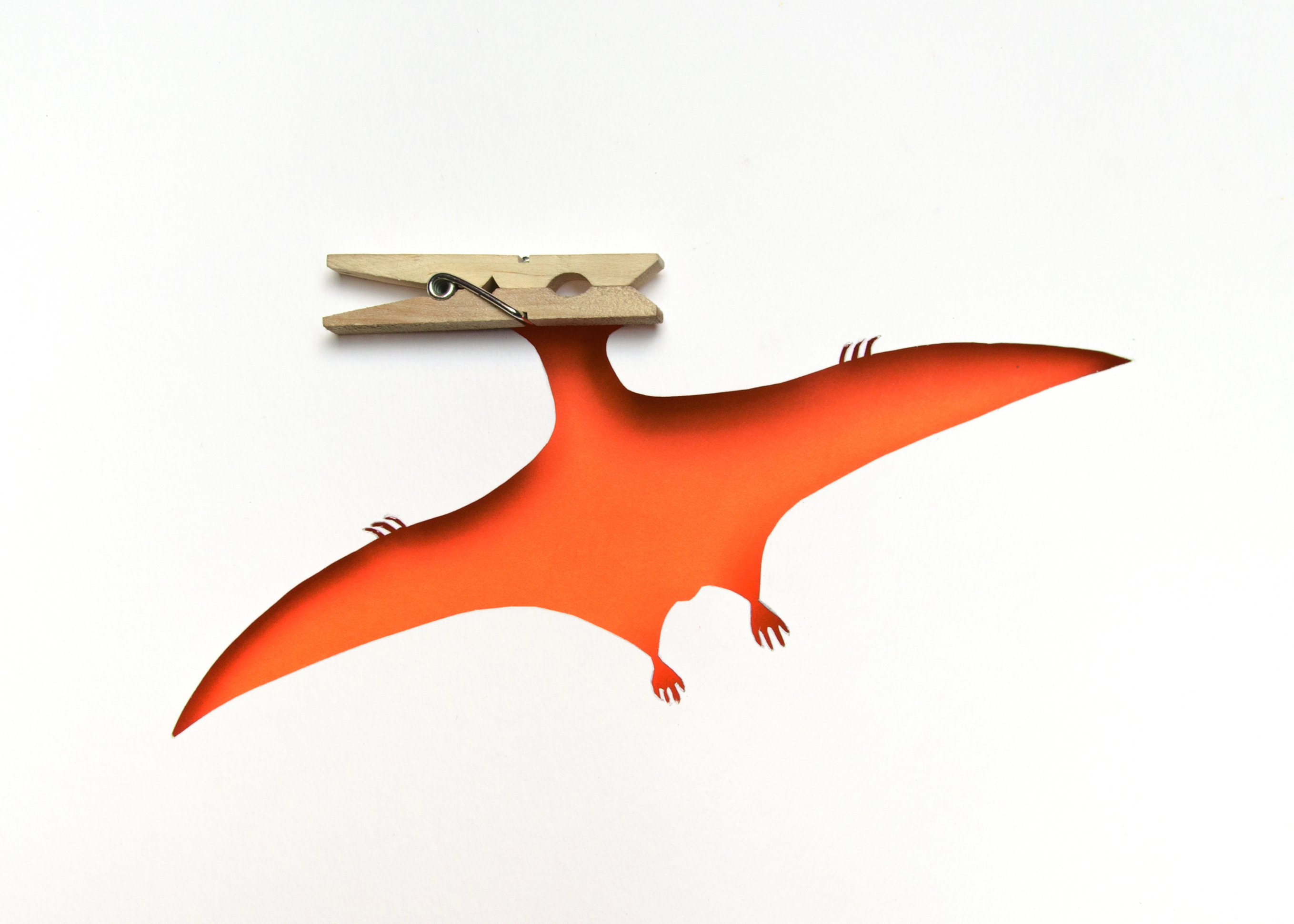 photo of a pteranodon made out of paper and a clothes pin by Kelly Crull