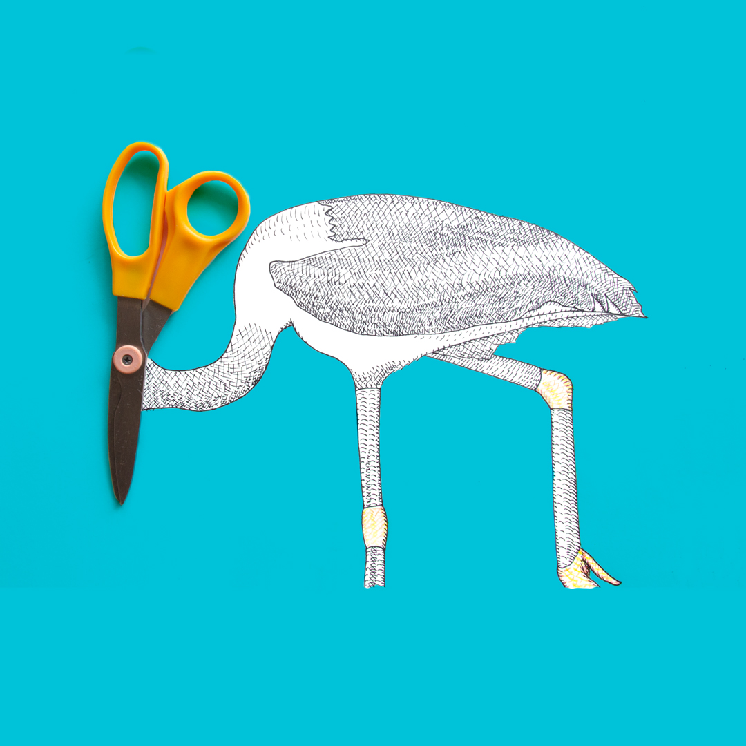 photo of a stork made with a pair of scissors, paper, ink and colored pencil by Kelly Crull