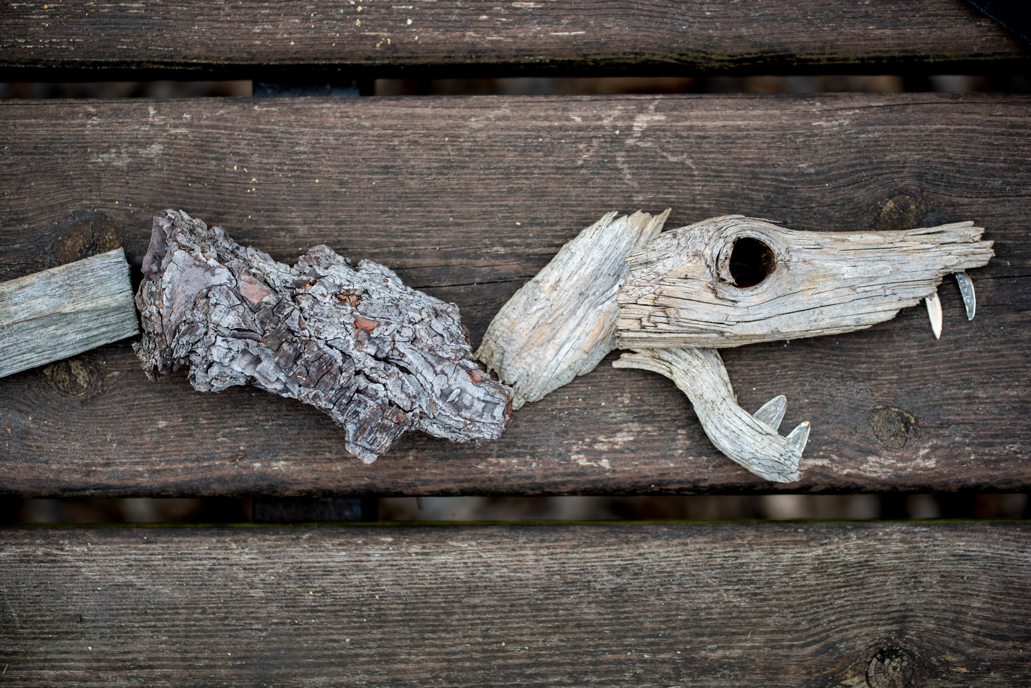 photo of snake made from wood chips by Kelly Crull