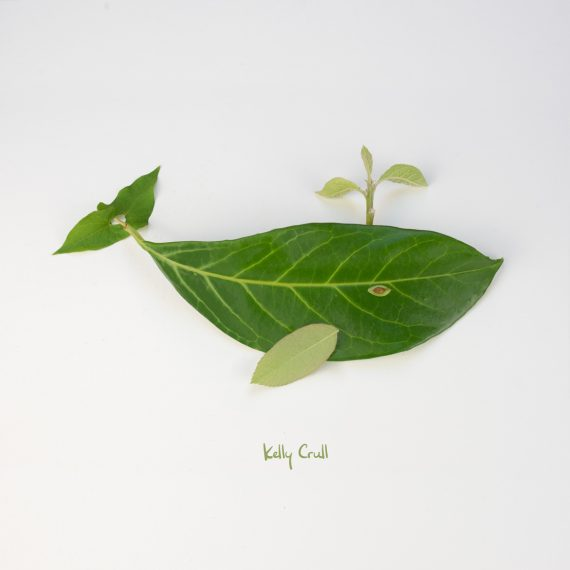 photo of whale illustration made with green leaves by Kelly Crull